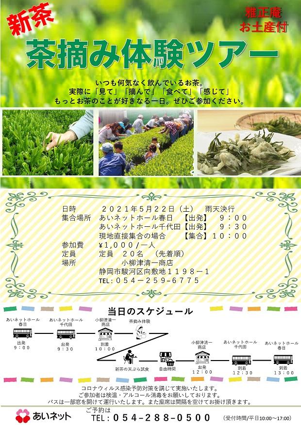 【5/22開催】☆あいネットサークル☆摘んで、食べて、旬を感じて 新茶摘み体験